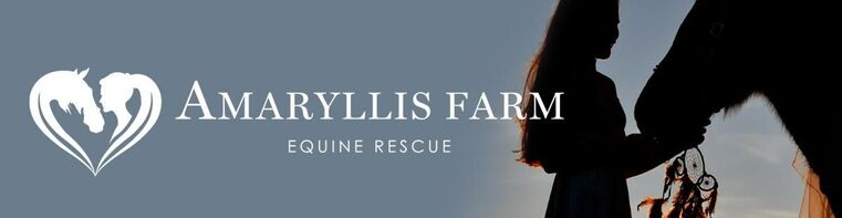 AMARYLLIS FARM EQUINE RESCUE & HOME FOR ELDERLY HORSES